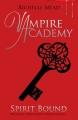 Couverture Vampire Academy, tome 5 : Lien de l'esprit Editions Razorbill 2010
