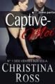 Couverture Captive-moi, tome 2 Editions Autoédité 2014