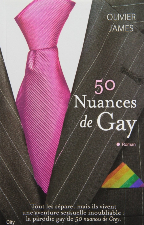 Couverture 50 Nuances de Gay