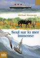 Couverture Seul sur la mer immense Editions Folio  (Junior) 2012