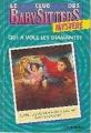 Couverture Le Club des Baby-Sitters, Mystère, tome 1 : Lucy et le voleur de bijoux / Qui a volé les diamants ? Editions Chantecler 1993