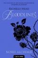 Couverture Bloodlines, tome 1 : Noire alchimie Editions Castelmore (Bit-Lit) 2014