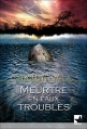 Couverture Meurtre en eaux troubles Editions Harlequin (FR) (Mira) 2002