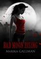 Couverture Bad Moon Rising, tome 1 : Le Choc Editions du Petit Caveau (Sang numérique) 2014