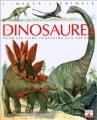 Couverture Les dinosaures : Pour les faire connaître aux enfants Editions Fleurus (L'imagerie animale) 1991