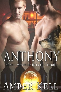 Couverture Meute de la lune, tome 01 : Anthony