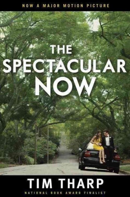 Couverture The spectacular now