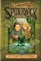 Couverture Au-delà du monde de Spiderwick, tome 1 : Le chant de la naïade Editions Pocket (Jeunesse) 2009