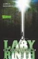 Couverture L'épreuve, tome 1 : Le labyrinthe Editions Carlsen (DE) 2013