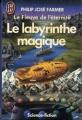 Couverture Le Fleuve de l'éternité, tome 4 : Le labyrinthe magique Editions J'ai Lu (Science-fiction) 1986