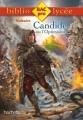 Couverture Candide / Candide ou l'Optimisme Editions Hachette (Biblio lycée) 2014