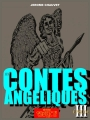 Couverture Les contes angéliques, tome 3 : L'errance du cavalier Editions Autoédité 2014