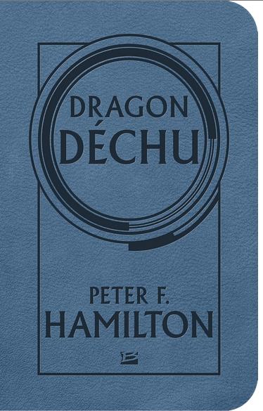 Couverture Dragon déchu