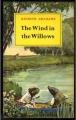 Couverture Le vent dans les saules Editions Methuen (Children's Books) 1973