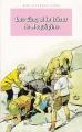 Couverture Les Cinq et le trésor de Roquepine Editions Hachette (Bibliothèque rose) 1992