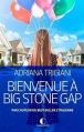 Couverture Big Stone Gap, tome 1 : Bienvenue à Big Stone Gap Editions Charleston 2015