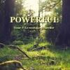 Couverture Powerful, tome 1 : Le royaume d'Harcilor Editions Autoédité 2015