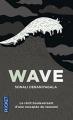 Couverture Wave Editions Pocket 2015