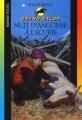 Couverture Nuit d'angoisse à l'écurie Editions Bayard (Poche) 2003