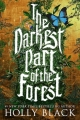 Couverture The darkest part of the forest Editions Indigo 2015