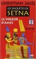 Couverture Les enquêtes de Setna, tome 3 : Le voleur d'âmes Editions XO 2015