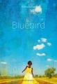 Couverture Bluebird Editions Didier Jeunesse 2015