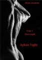 Couverture Désirs inconnus, tome 1 : Désir captif Editions Autoédité 2015