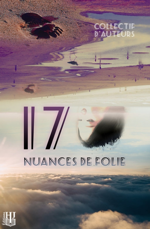Couverture 17 nuances de folie