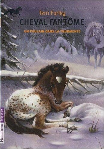 Couverture Cheval Fantôme, tome 5 : Un poulain dans la tourmente