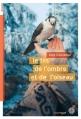 Couverture Le fils de l'ombre et de l'oiseau Editions Du rouergue (doAdo) 2015