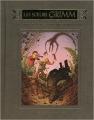 Couverture Les Soeurs Grimm, tome 6 : Le procès du Grand Méchant Loup Editions Pocket 2009