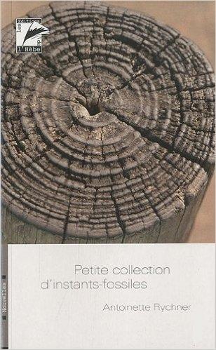 Couverture Petite collection d'instants-fossiles