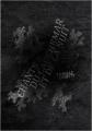 Couverture Chants du cauchemar et de la nuit Editions Dystopia Workshop 2014