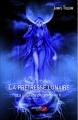 Couverture La prophétie des éléments, tome 2 : La prêtresse lunaire Editions du Net 2014
