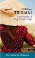 Couverture Big Stone Gap, tome 1 : Bienvenue à Big Stone Gap Editions Points (Grands romans) 2016
