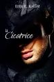 Couverture La cicatrice Editions Juno Publishing (Modern love) 2016