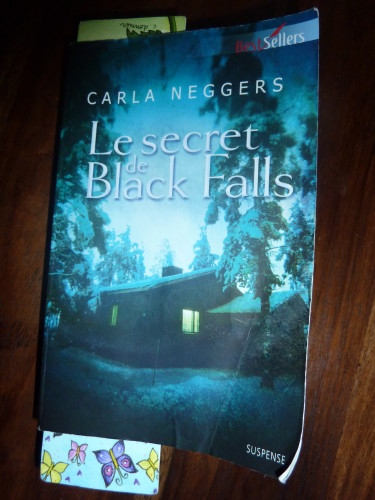 Couverture le secret de Black Falls