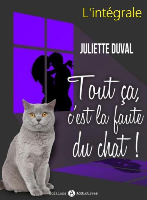 Tout ça c'est la faute du chat (Ma rockstar, son chat et moi) - L'intégrale & Bonus - Juliette Duval
