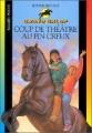 Couverture Coup de théâtre au Pin Creux Editions Bayard (Poche) 2001