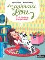 Couverture Les animaux de Lou, tome 14 : D'où tu viens, Petit Chien ? Editions Nathan (Premières lectures) 2016