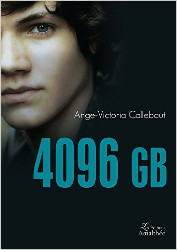 Couverture 4096 GB
