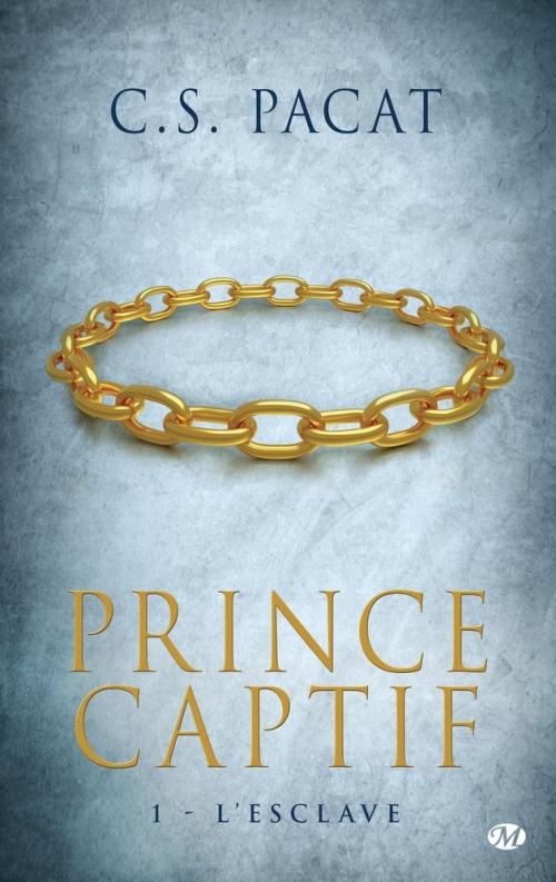 Couverture Prince captif, tome 1 : L'Esclave