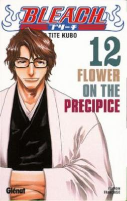 Couverture Bleach, tome 12 : Flower on the precipice