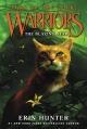 Couverture La guerre des clans, cycle 5 : L'aube des clans, tome 4 : L'étoile flamboyante Editions HarperCollins 2016