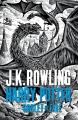 Couverture Harry Potter, tome 4 : Harry Potter et la coupe de feu Editions Bloomsbury (Adult Edition) 2015