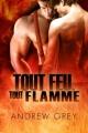 Couverture Par le Feu, tome 2 : Tout feu, tout flamme Editions Dreamspinner Press 2012