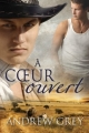 Couverture Histoire de coeur, tome 3 : A coeur ouvert Editions Dreamspinner Press 2016