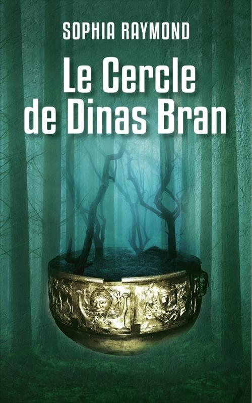 Couverture L'âme de fond / Le cercle de Dinas Bran