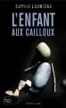 Couverture L'enfant aux cailloux Editions Fleuve (Noir - Thriller) 2011