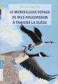Couverture Le merveilleux voyage de Nils Holgersson à travers la Suède Editions Flammarion (Jeunesse) 2010